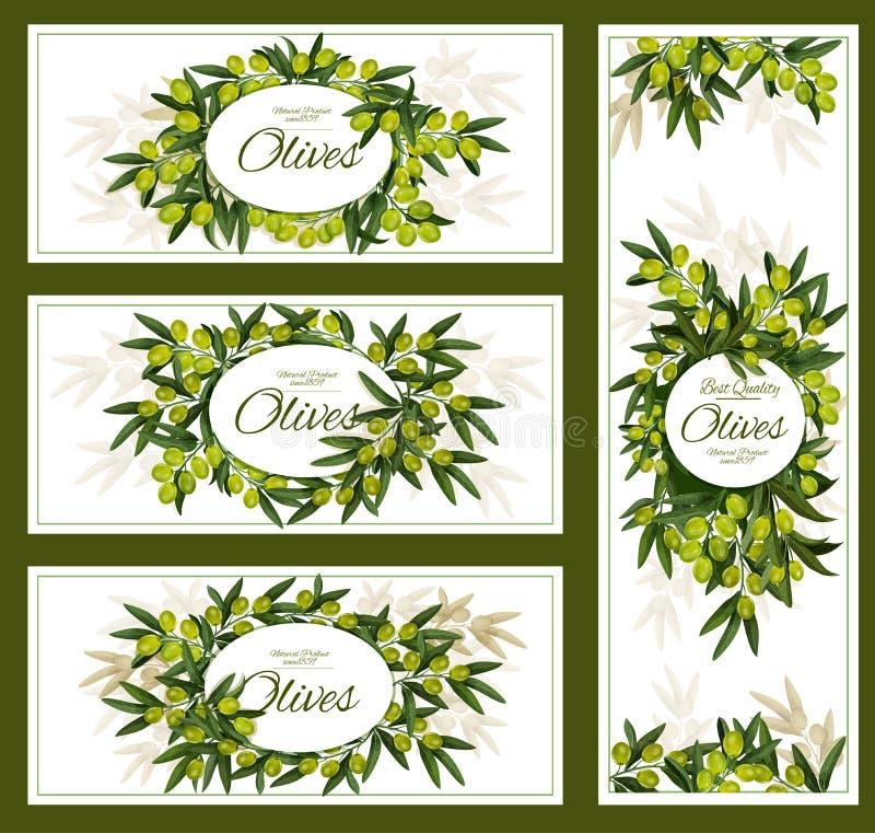 橄榄和有机橄榄油传染媒介海报 向量例证