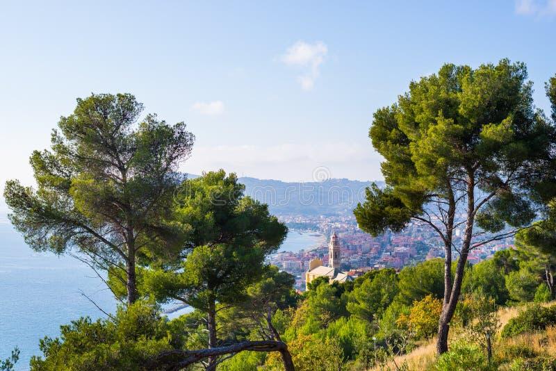 橄榄树和海杉木树丛高在利古里亚,意大利的多小山海岸线 Cervo历史村庄和Dian海湾  免版税库存图片