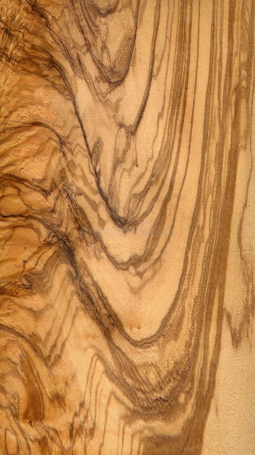 橄榄树木头 库存例证
