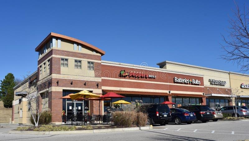 橄榄树枝密西西比购物中心 免版税图库摄影