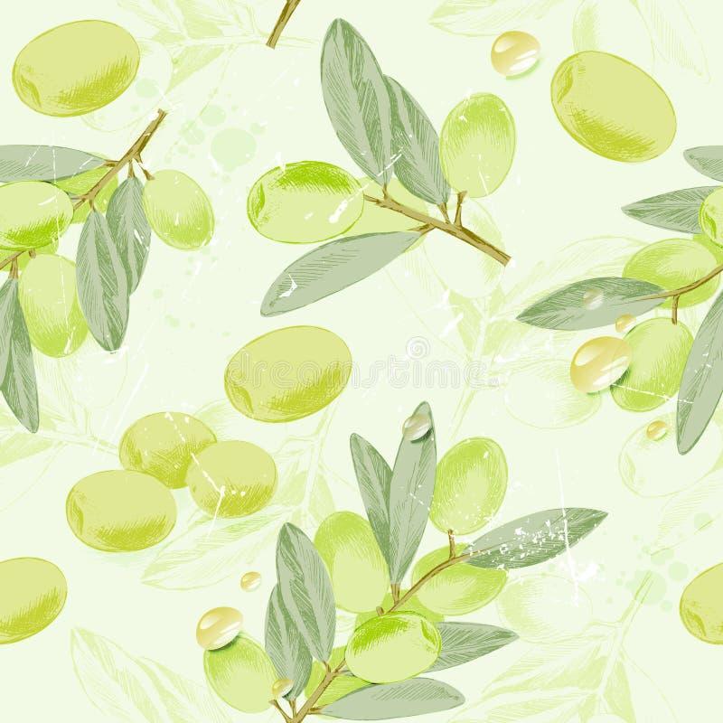 橄榄树枝的无缝的样式葡萄酒图象与橄榄油的下降 也corel凹道例证向量 向量例证