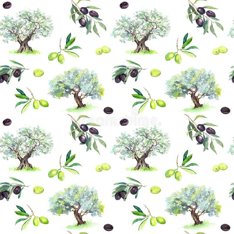 橄榄树枝,树-橄榄无缝的样式 水彩 库存例证