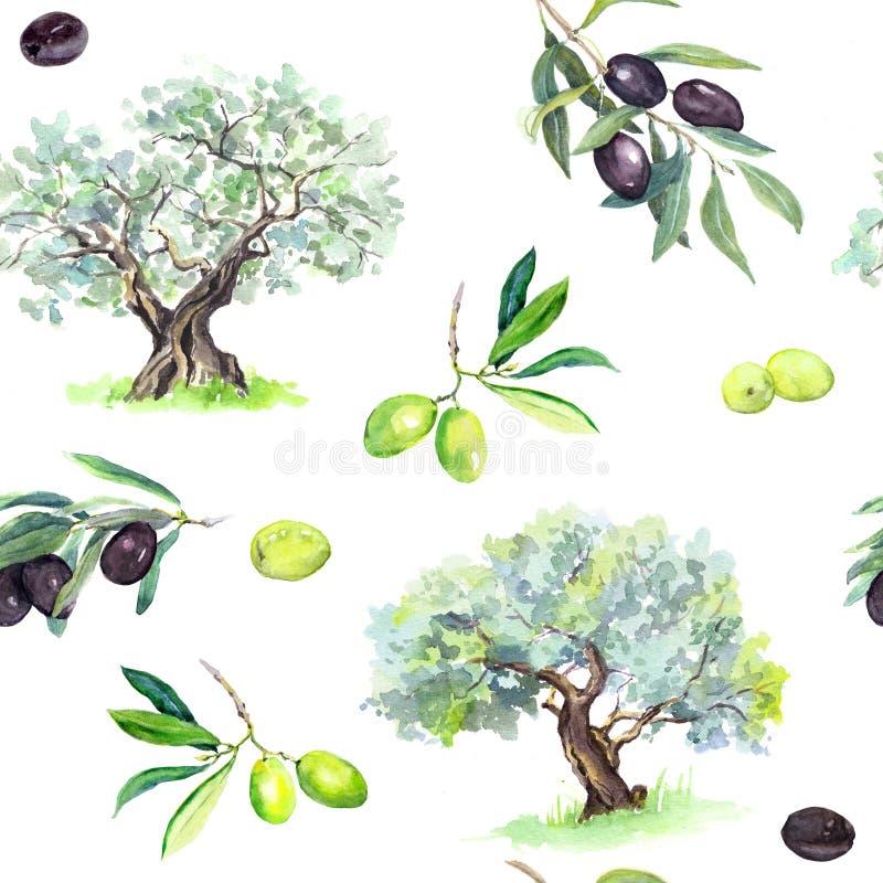 橄榄树枝,树-橄榄无缝的样式 水彩 皇族释放例证