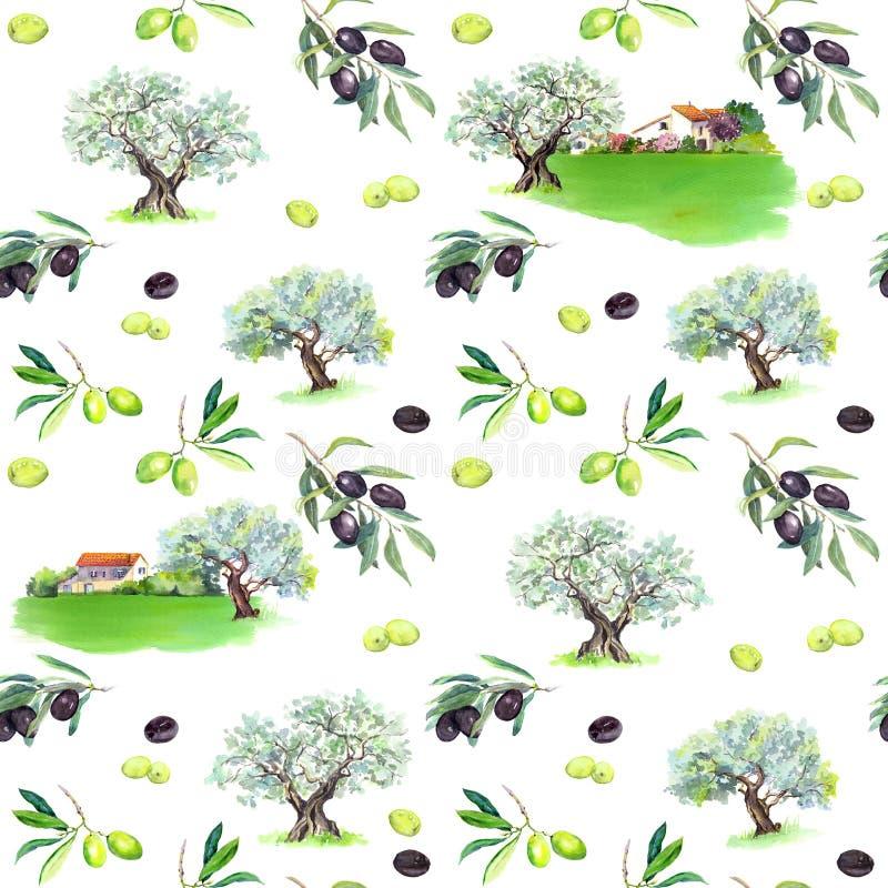橄榄树枝,橄榄树,农厂房子 无缝的模式 水彩 库存例证