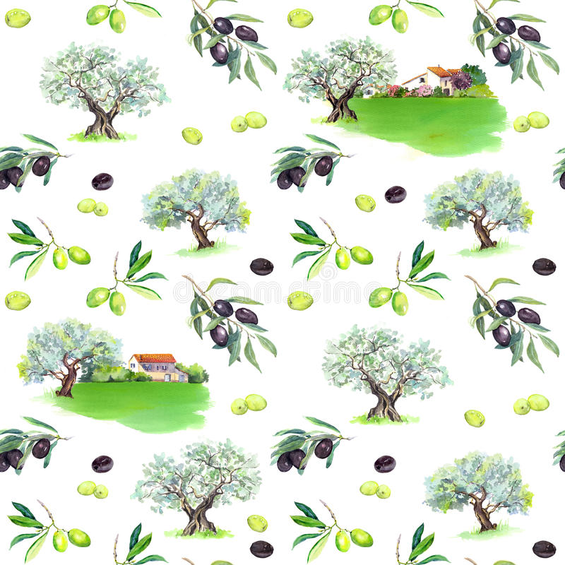 橄榄树枝,橄榄树, provencal房子 法国无缝的样式 普罗旺斯的水彩 库存例证