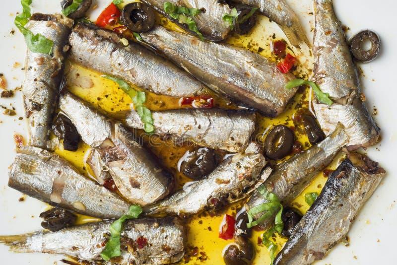 橄榄油中的西班牙沙丁鱼 免版税库存图片