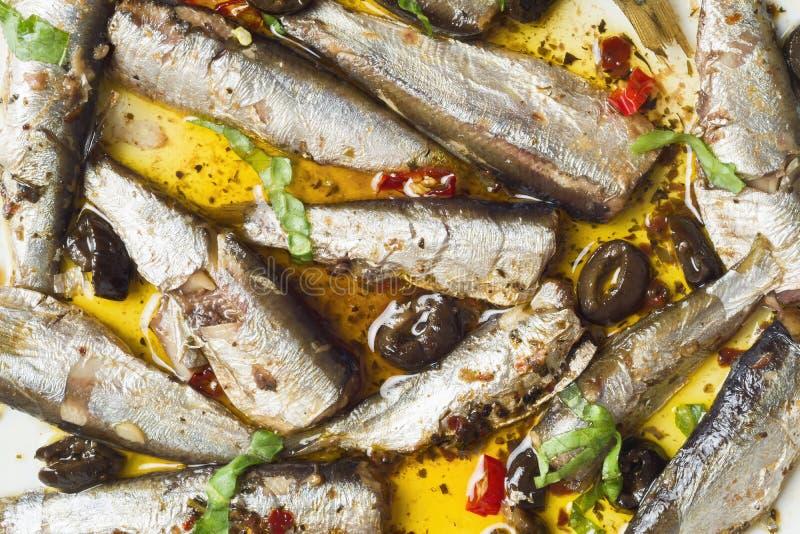橄榄油中的西班牙沙丁鱼 免版税库存照片