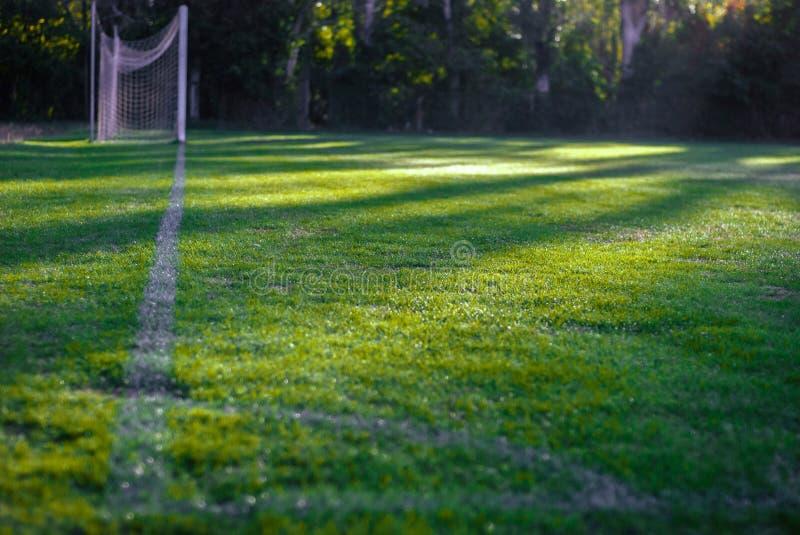橄榄球场 背景域橄榄球草绿色纹理 秋天 橄榄球门 给赋予生命的 库存照片