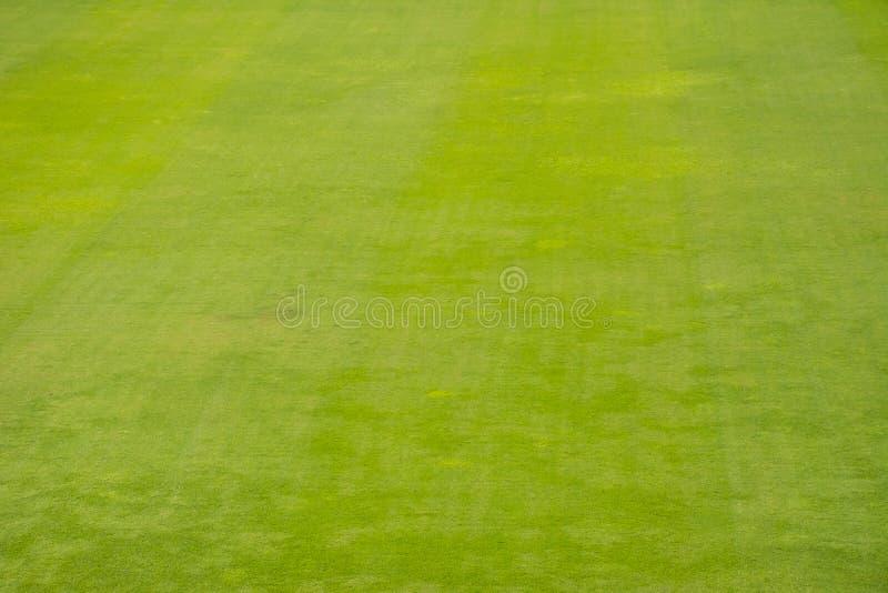 橄榄球草地 免版税库存图片