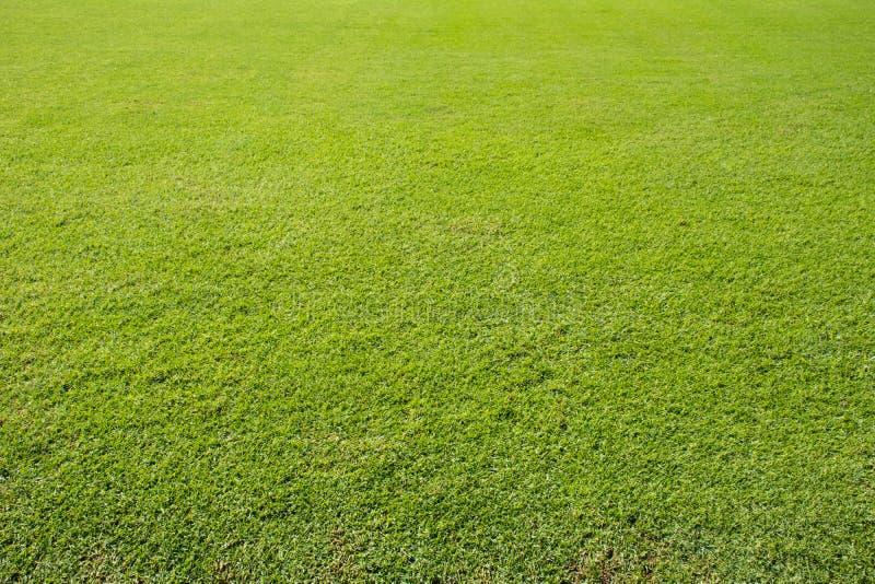 橄榄球草地 图库摄影