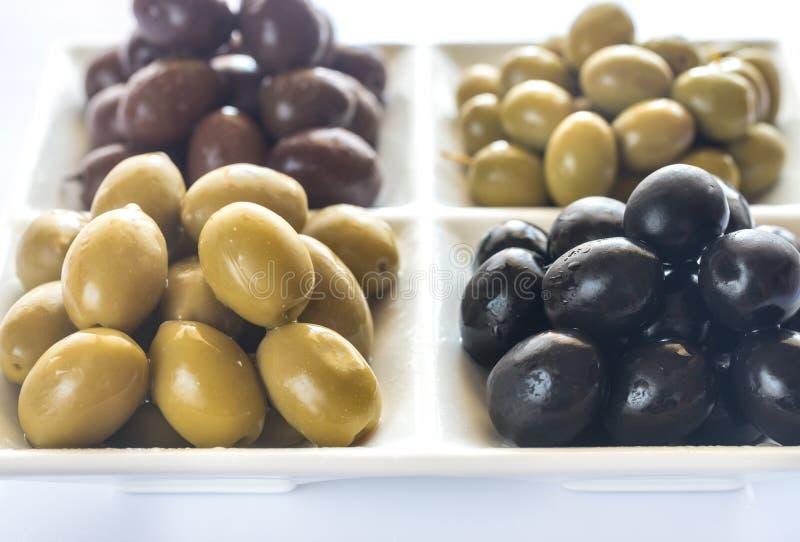 橄榄的分类 库存图片