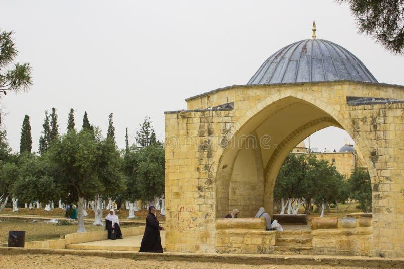橄榄的阿拉伯香客在圣殿山附近在耶路撒冷 免版税图库摄影