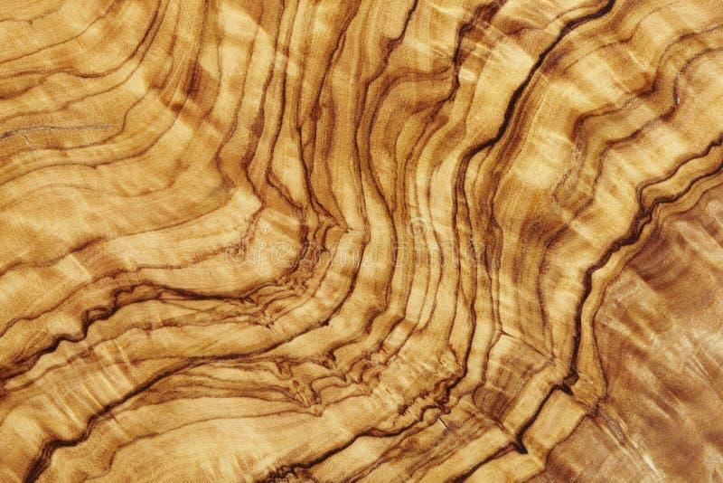 橄榄色木头 免版税图库摄影