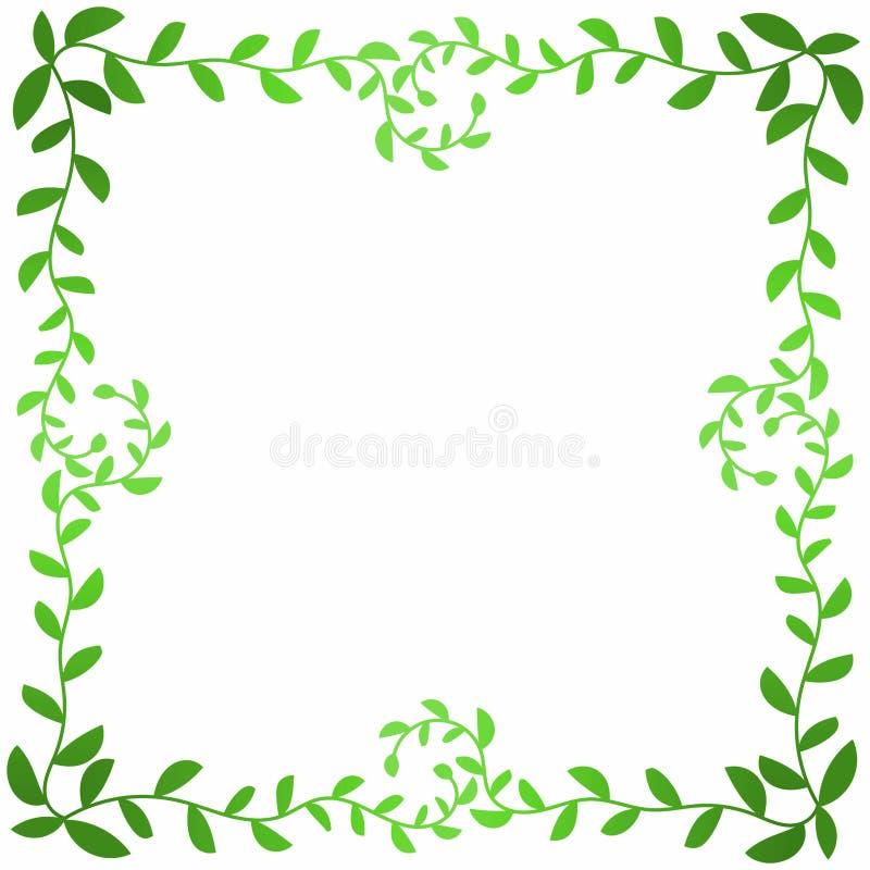 橄榄色的叶子分支方形的框架 皇族释放例证
