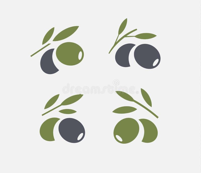 橄榄色的商标集合 与叶子的黑成熟和绿橄榄分支 鲜美食品象征 简单的略写法设计 皇族释放例证