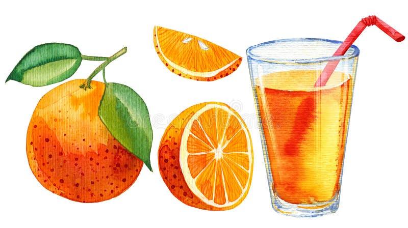 橙汁玻璃的水彩例证 向量例证