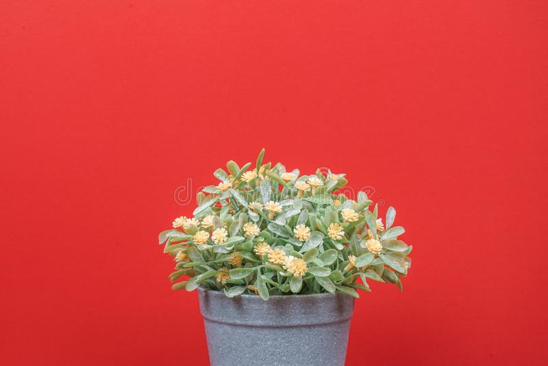 橙红色背景上的假树 图库摄影