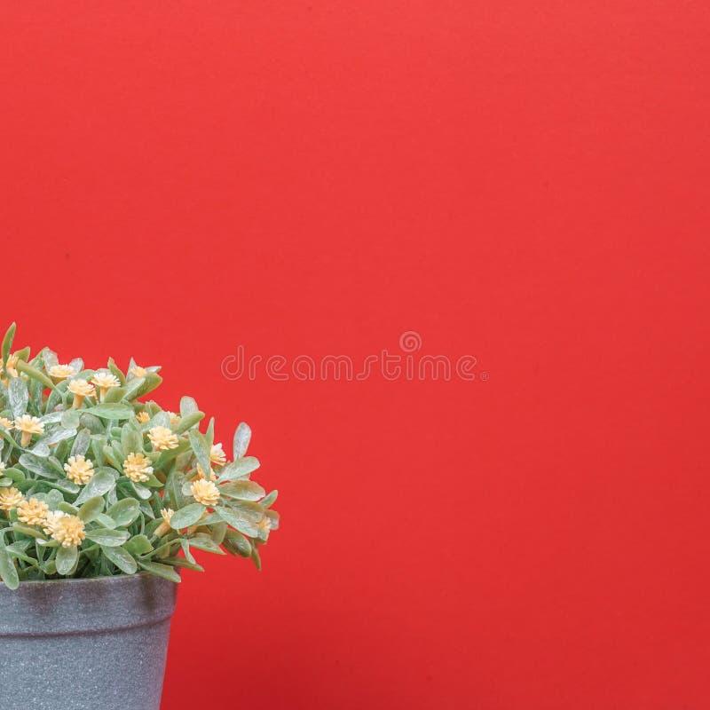 橙红色背景上的假树 库存照片