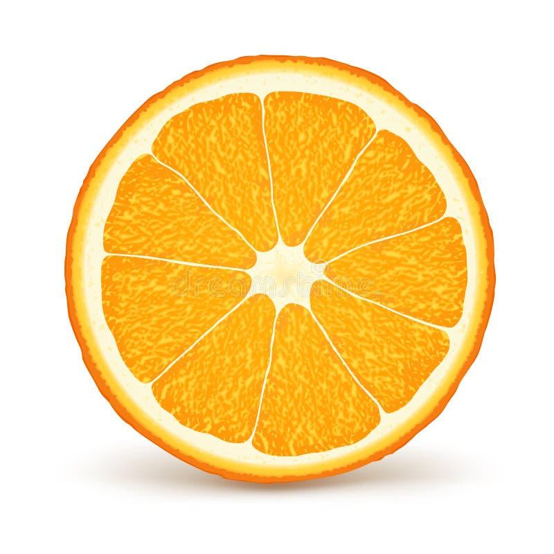 橙色。 健康食物。 皇族释放例证