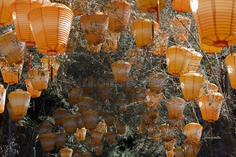 橙色中国的灯笼 库存图片