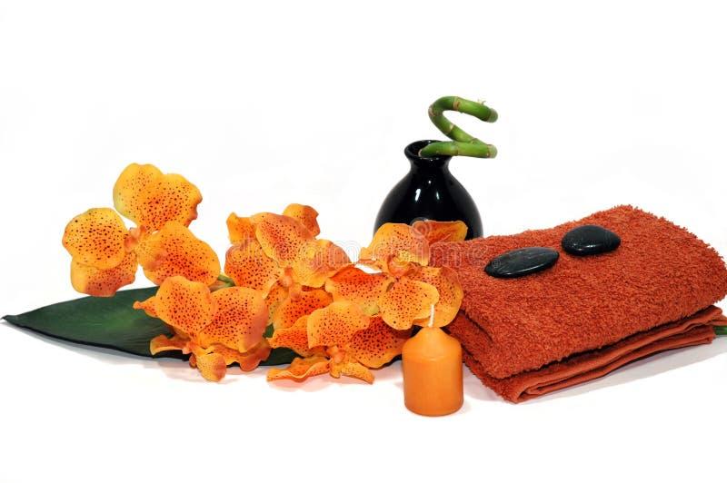 橙色兰花 库存照片