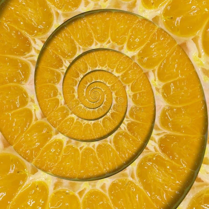 橙色切片螺旋漩涡摘要分数维背景 橙色切片螺旋背景样式 不可能的抽象橙色食物 库存图片