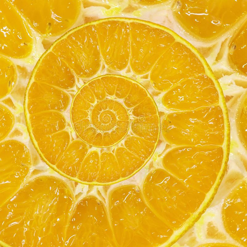 橙色切片螺旋漩涡摘要分数维背景 橙色切片螺旋背景样式 不可能的抽象橙色食物 免版税库存图片