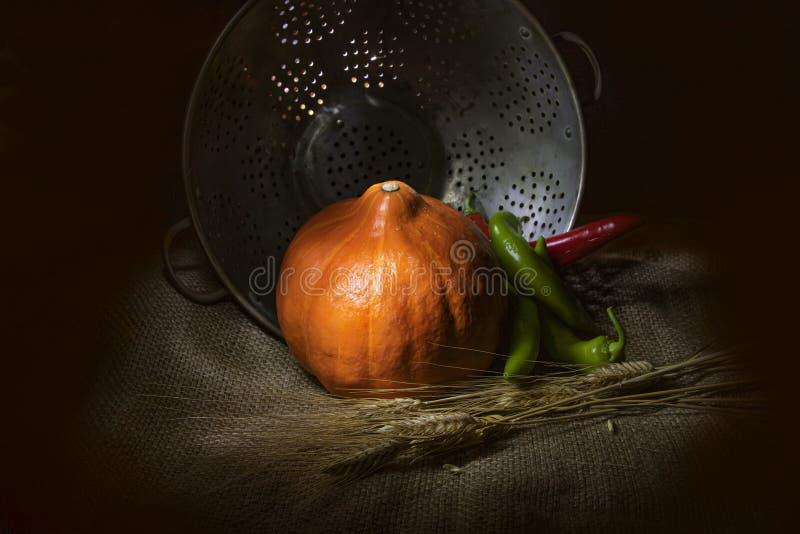 橙色南瓜、红色和绿色辣椒和干燥放置在金属杯子背景的麻袋布的麦子外套 免版税库存照片