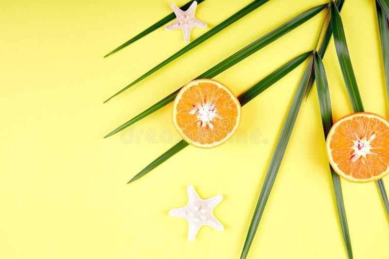橙色果子、海星和棕榈叶 库存照片