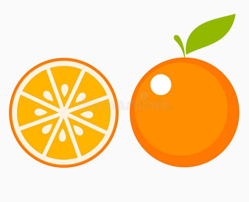 橙色果子切片 库存例证