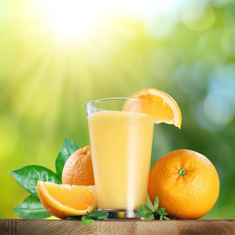 橙色果子和杯橙汁 免版税库存照片