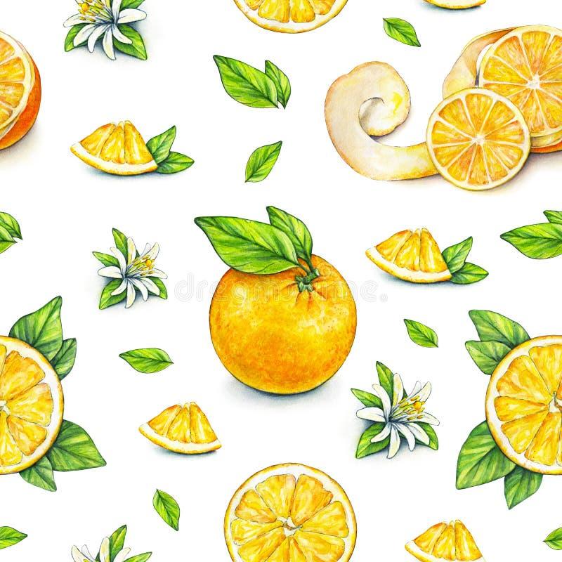 橙色果子成熟与绿色叶子 画开花的河结构树水彩绕的银行 手工 热带的果子 健康的食物 设计的无缝的模式 库存例证