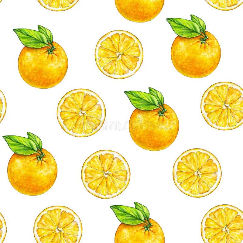 橙色果子成熟与绿色叶子 画开花的河结构树水彩绕的银行 手工 热带的果子 健康的食物 设计的无缝的模式 皇族释放例证