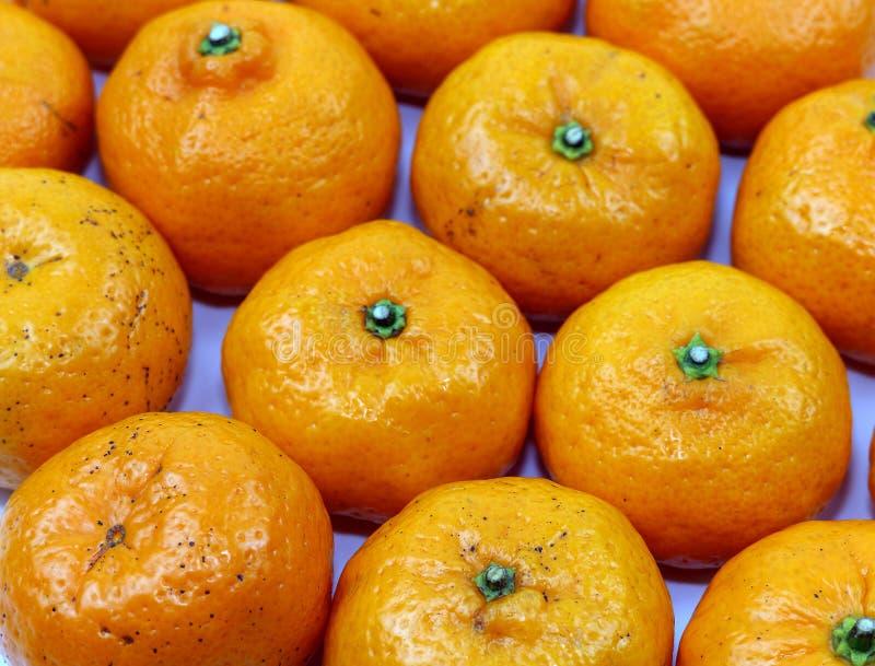 橙色甜果子 免版税库存照片