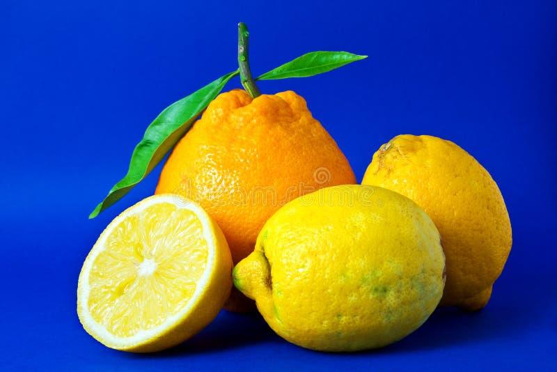 橙色的柠檬 库存图片