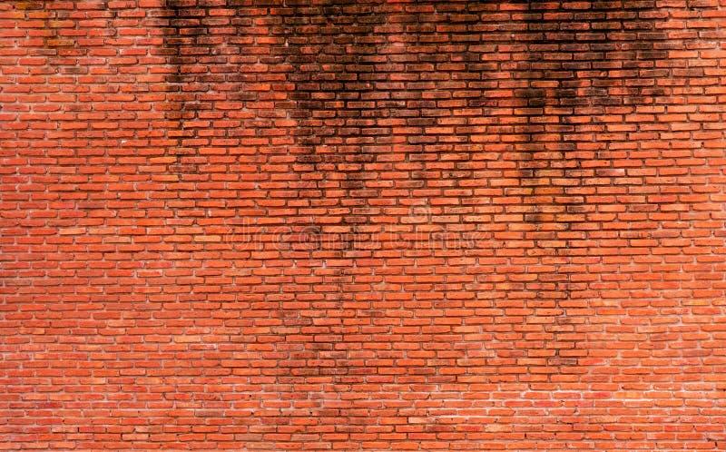 橙色砖墙纹理背景 文本的背景 外部建筑学概念 肮脏的橙色砖墙摘要 库存照片