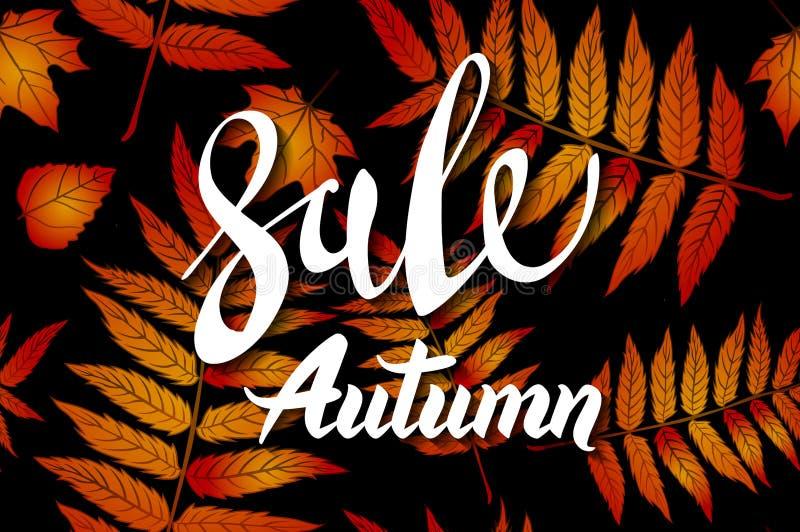 橙色秋天销售背景、手拉的秋天书法与落的叶子,网横幅、购物的销售或者季节性海报, 皇族释放例证