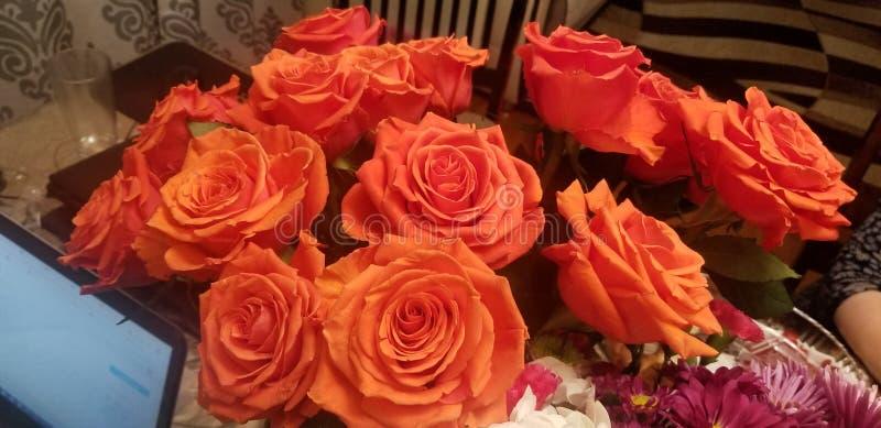 橙色罗斯花束徒升 库存照片