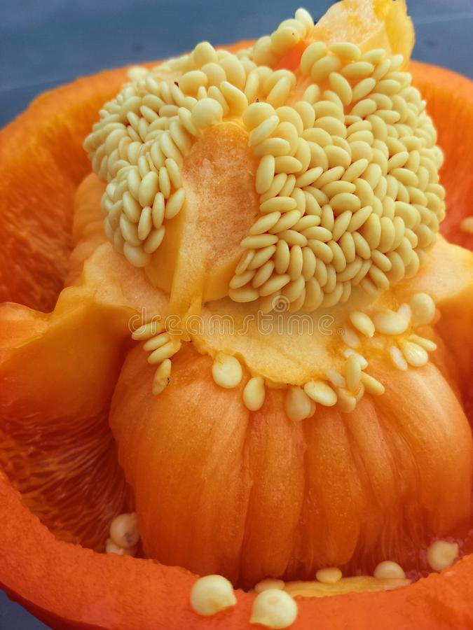 橙色胡椒 免版税库存照片