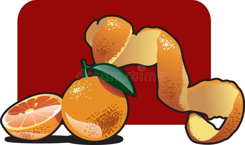 橙色 皇族释放例证
