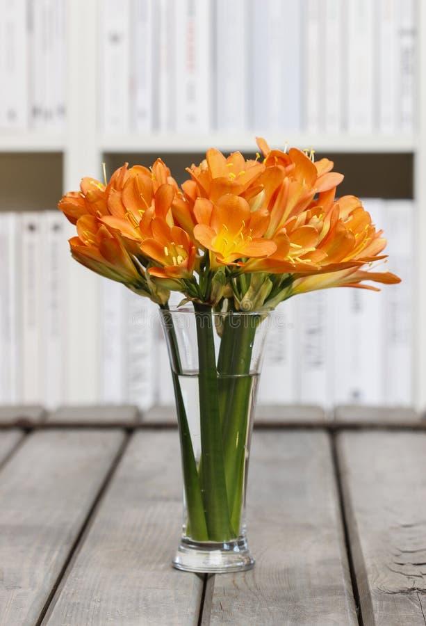 橙色clivia花束在玻璃花瓶开花。 免版税库存图片
