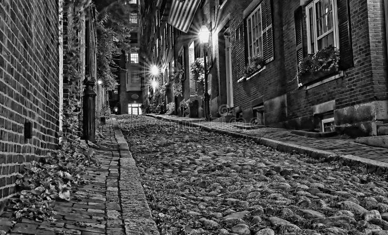 橡子查寻晚上街道的波士顿 免版税库存图片