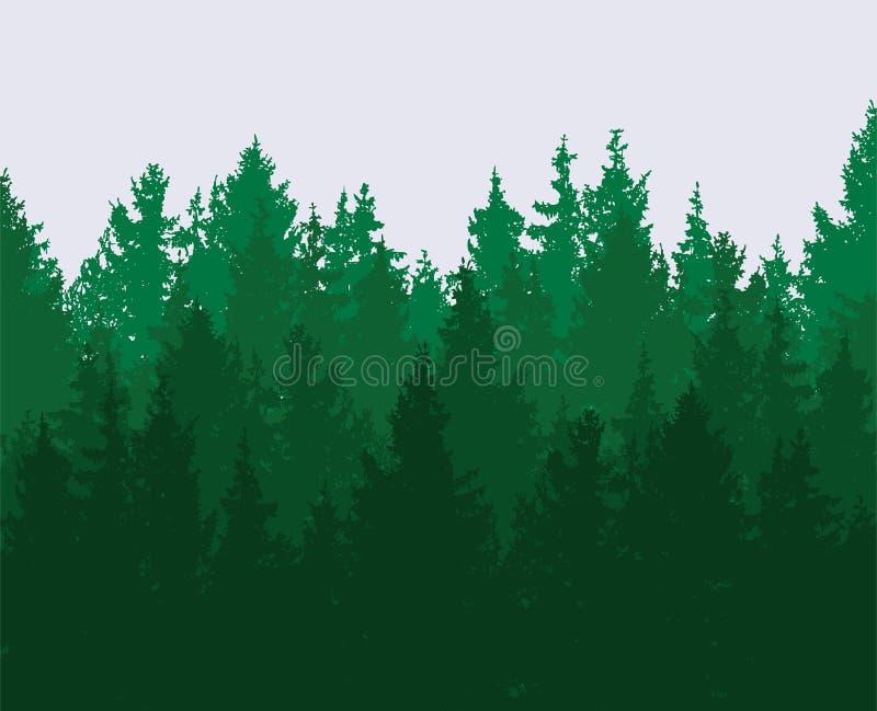 橡子秋天背景边界设计森林橡木阳光 绿色春天森林,自然风景 向量例证
