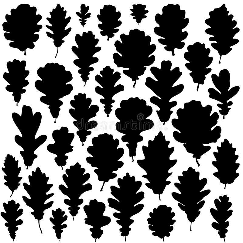 橡木叶子在白色背景传染媒介隔绝的剪影集合 向量例证