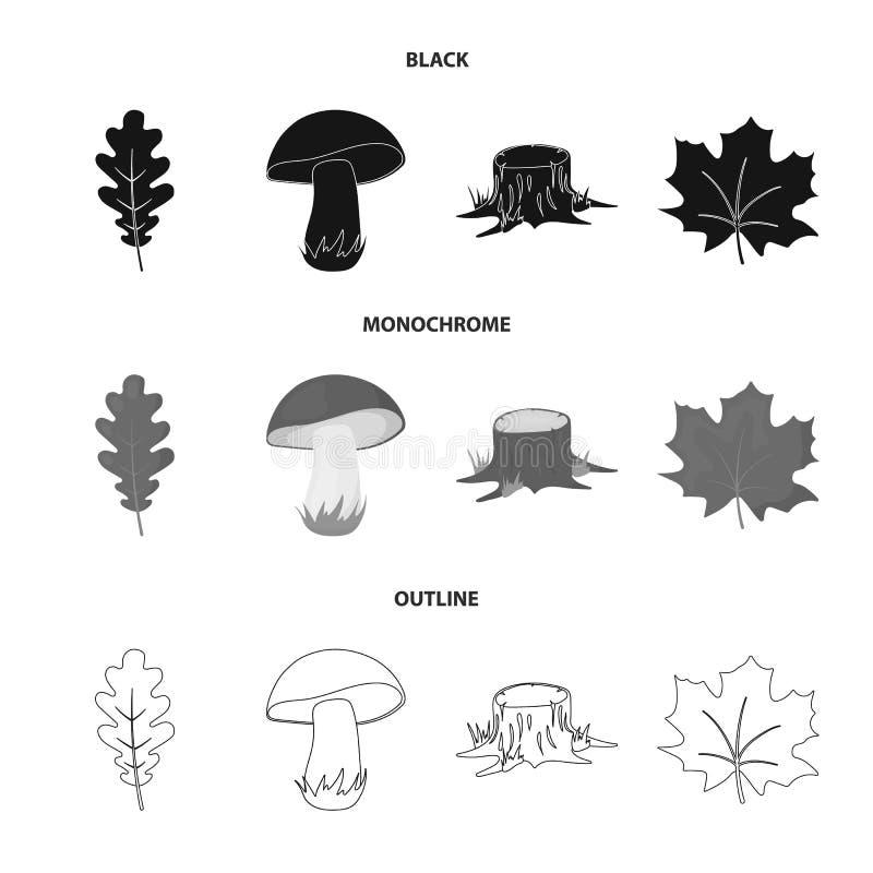 橡木叶子,蘑菇,树桩,枫叶 在黑的森林集合汇集象,单色,概述样式传染媒介标志股票 向量例证