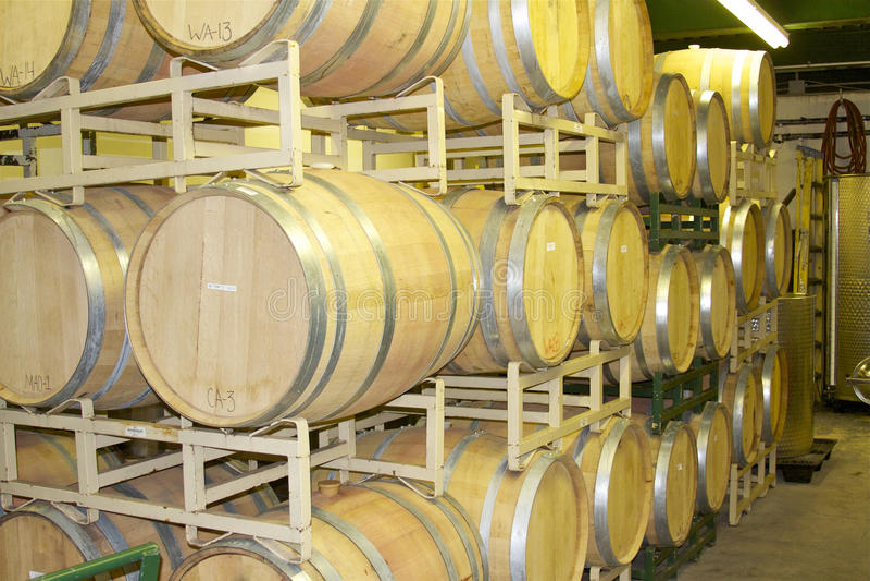 橡木在机架的葡萄酒桶 库存图片