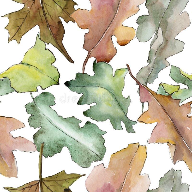 橡木在水彩样式把样式留在 皇族释放例证