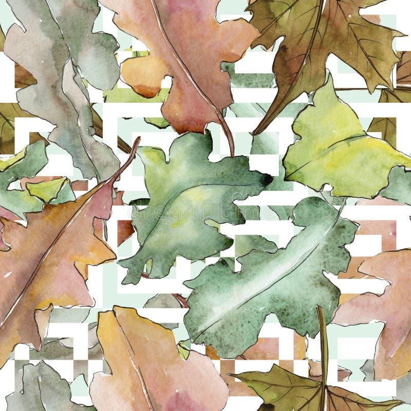 橡木在水彩样式把样式留在 向量例证