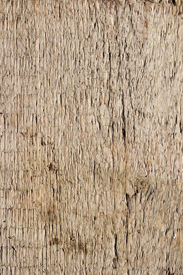 橡木板条纹理 图库摄影