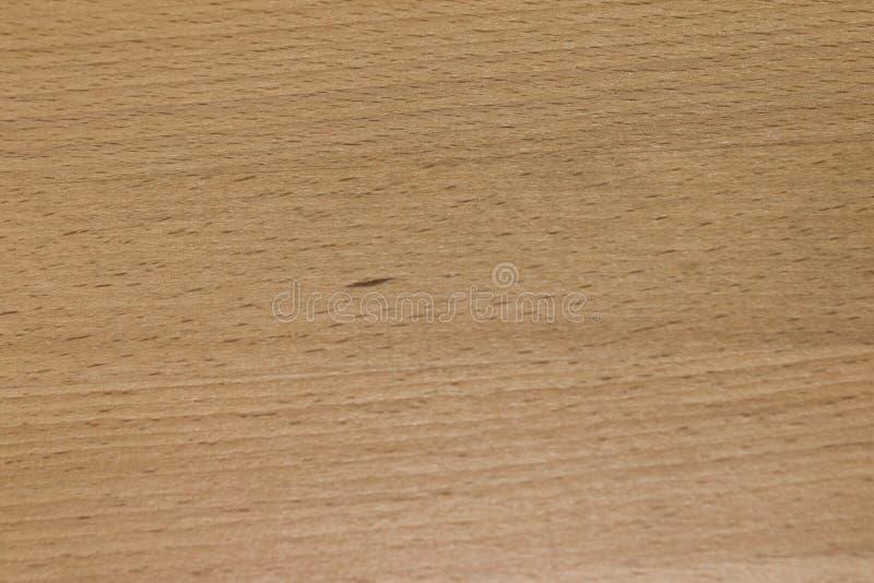 橡木板条纹理  库存照片
